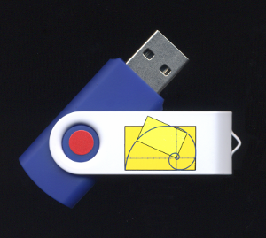 Calculus Flash Drive