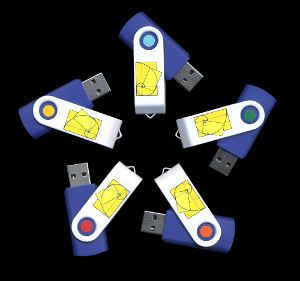 All 5 courses on flash drives